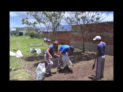 Food Plantation Organic Garden