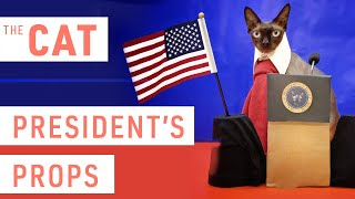 Sphynx Cat and President Props