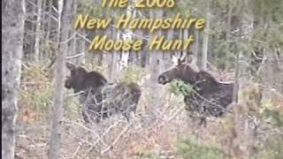 Northern NH Guide Services 2008 Sas Cow Moose Hunt