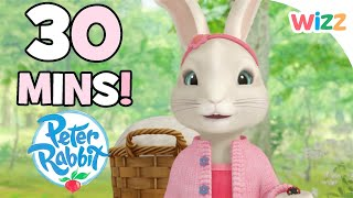 Peter Rabbit - November Special | 30 minutes | Autumn Tales with Peter Rabbit