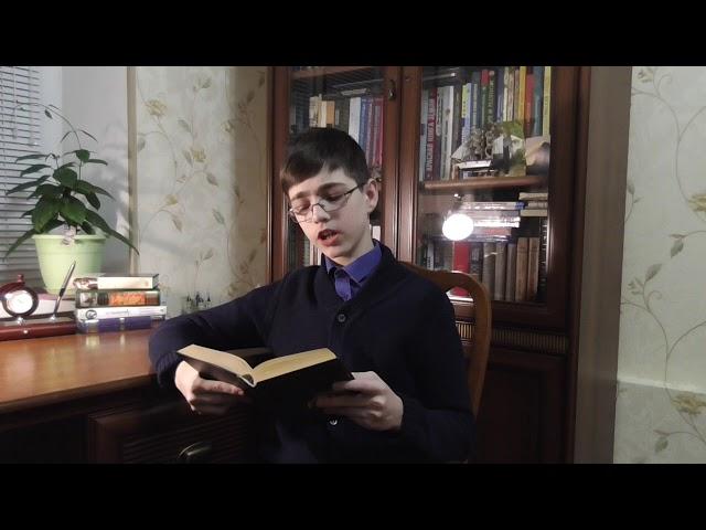 Изображение предпросмотра прочтения – АртёмМиранков читает произведение «Козетта» В.Гюго