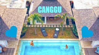 CANGGU IS OUR FAVOURITE BALI SPOT  ❲V ᴸ ᴼ ᴳ 47❳