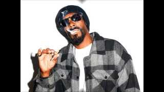 Snoop Dogg feat. Pharrel Drop It Like It