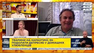 Как преодолеть депрессию у домашних любимцев. Зоопсихолог Сергей Клочко в эфире «Нового дня».