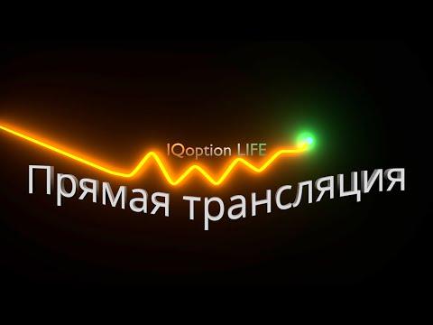 Прямая трансляция торговли на IQ Option