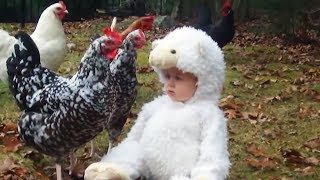 Cute Babies Love Farm Animals - TRY NOT TO LAUGH at This Funny Baby Fails Compilation