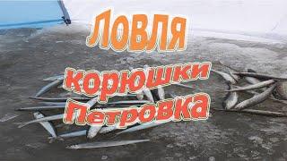 Ловля корюшки Петровка Зимняя рыбалка в приморье 2019