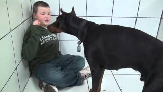 8 year old trains Doberman to Bark