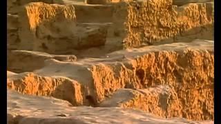 Каракумы.Народ оазиса