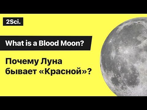 Почему Луна красная?  Кровавая Луна 2019 Лунное затмение