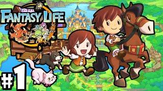 Fantasy Life 3DS: Adventure Lives! Character Creation PART 1 Mercenary Gameplay Walkthrough Nintendo