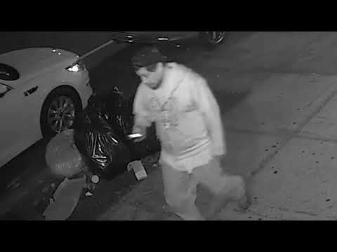 Video surveillance of Borough Park Intruder