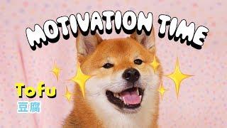 motivation-time-w-tofu-episode-2