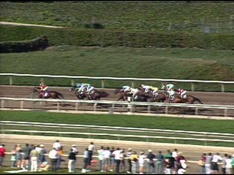 1993 Breeders Cup Juvenile Youtube