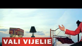 VALI VIJELIE & ANA MARIA GOGA - CAND ITI AUD NUMELE 2014