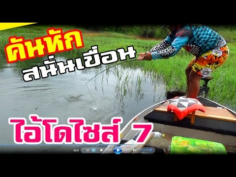 กบซุปตาร์ # ตกปลาชะโดยักษ์ !!! คันหักสนั่นเขื่อน BY Yod911