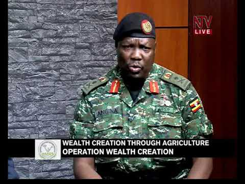 Wealth Creation through Agriculture – Operation Wealth Creation 13TH NOV 2017