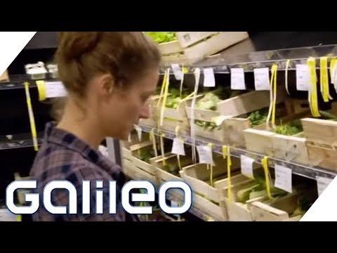 Arbeiten und Geld sparen: In diesem Supermarkt arbeiten die Kunden für Rabatte | Galileo | ProSieben