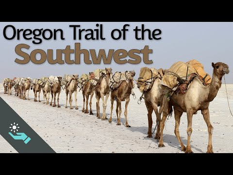 Scouting the Southwest | US Camel Corps