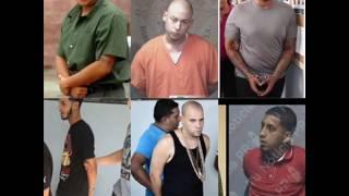 El Arresto de Tempo, Don Omar,  Arcangel, Cosculluela, Anuel AA y otros
