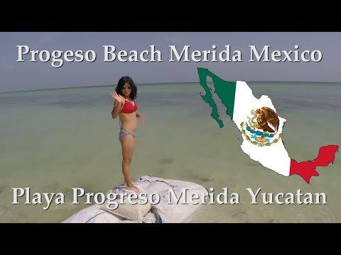 Weekend Enjoyable In Progreso Seashore! – Residing in Merida Mexico