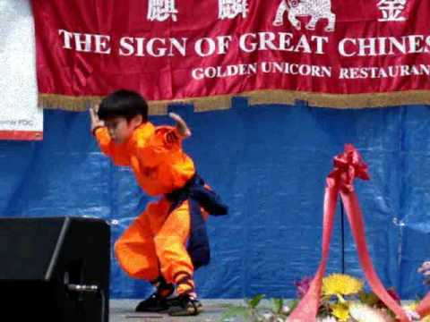 MANHATTAN SHAOLIN KUNG FU CENTER Sifu Chao Hai & Students ParT 1/2 - 7th Annual Summer Burmese Water Festival NYC Chinatown 07.26.09