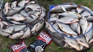 Рыбалка на фидер в Литве