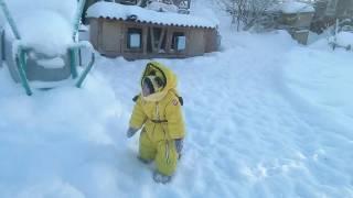 Прогулка солнечного зайчика(яванская макака Федор)