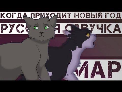 MAP  Коты воители Когда приходит Новый год  RUS
