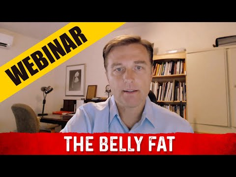 The Belly Fat Webinar