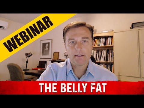 The Belly Fat Webinar