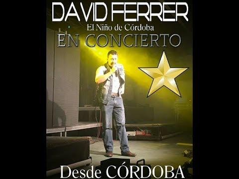 DAVID FERRER -  Actuacion