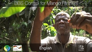 BBS Control for Mango Farmers