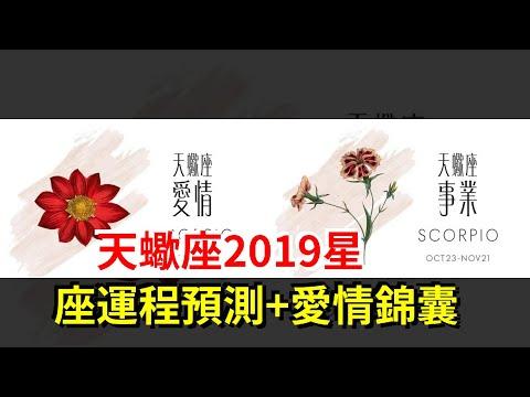 天蠍座2019星座運程預測+愛情錦囊,[星座運勢大全]