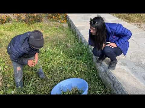 Pokhara To Bujhrungkhola   || Gandaki Trout Farm || VISITNEPAL2020 🇳🇵