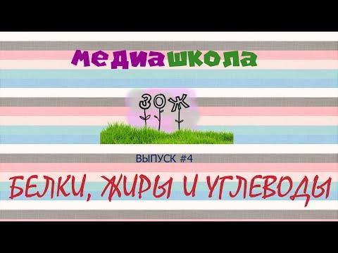 Медиашкола ЗОЖ / выпуск 4 / СУТОЧНАЯ НОРМА БЖУ