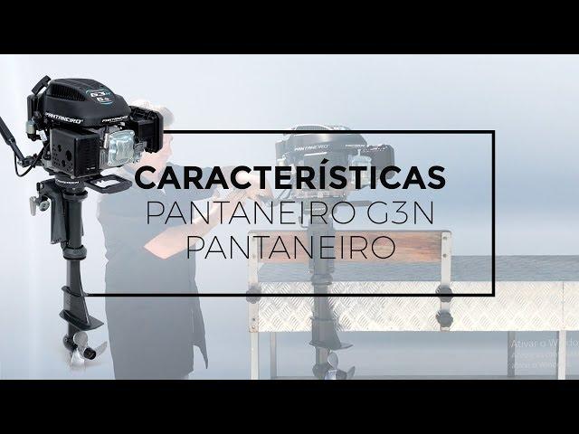 111 - Características do Novo Pantaneiro G3N Meghi