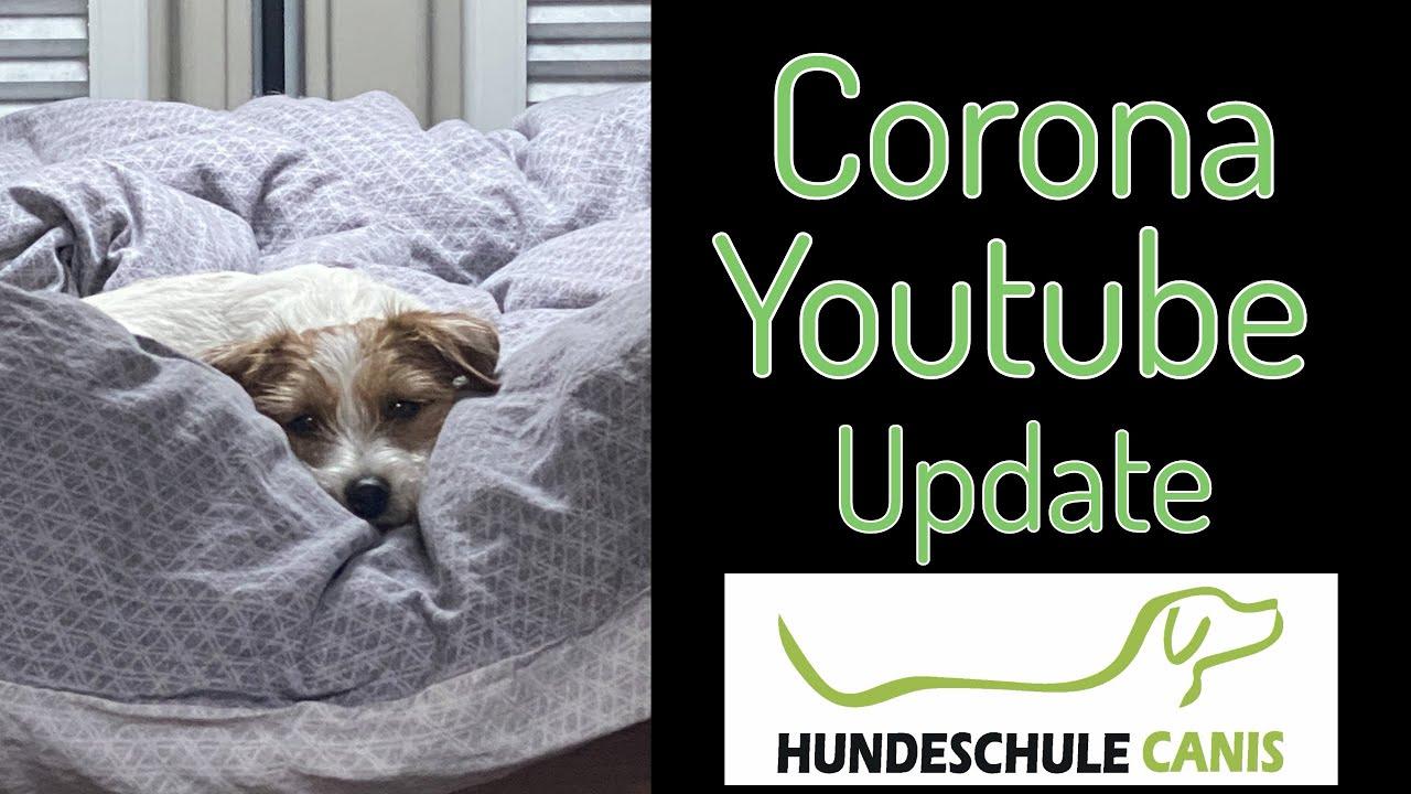 Hundeschule Corona