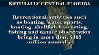 Naturally Central Florida - Indian River Lagoon