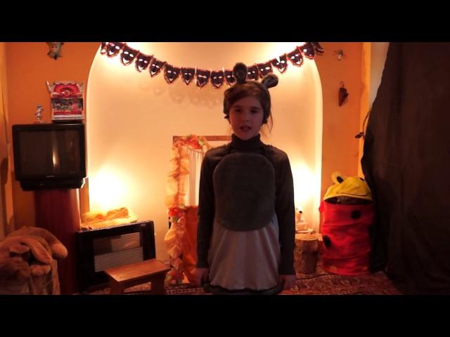 Изображение предпросмотра прочтения – ЕкатеринаГладилина читает произведение «Мыши (В нашем доме мыши поселились…)» В.Я.Брюсова