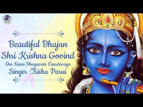 Beautiful Bhajan - Shri Krishna Govind - Om Namo Bhagavate Vasudevaya | Krishna Bhajan Song