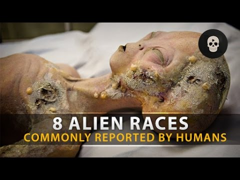 8 Alien Races Commonly Reported By Humans
