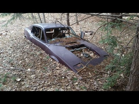 A Very Rare Saab Sports Car Lost In The Woods!!