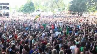 Irie Révoltes - revoltesTV auf dem Rock for people und Summerjam 2012