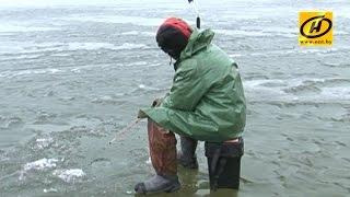 «Рыбный скандал» в Новолукомле. Что поссорило рыбаков и нового арендатора озера?