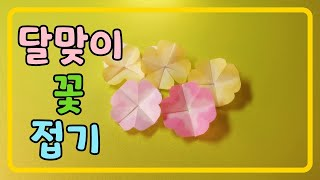 (종이접기) 쉬운꽃접기, 달맞이꽃접기, 쉬운색종이접기,…