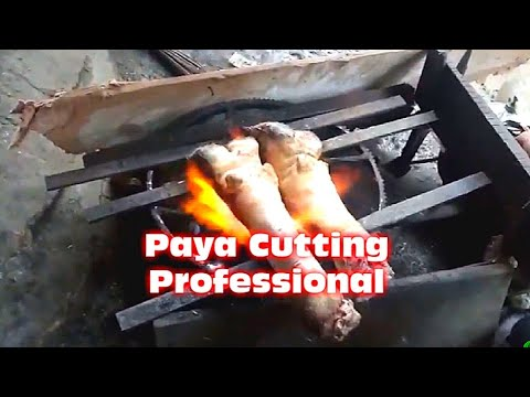 Beef Paya Cutting & Cleaning Professional | Trotter Cutting | Paya Cutting Style in Pakistan