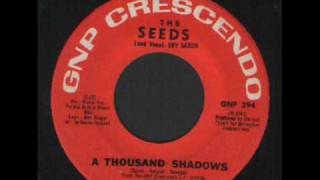THE SEEDS -  A THOUSAND SHADOWS sixties garage from the u.s