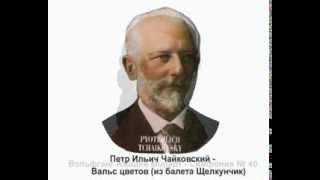 Наиболее популярные отрывки из сочинений известных композиторов 5 классическая музыка