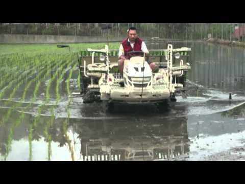 Rice transplanter 8 line播田 插秧